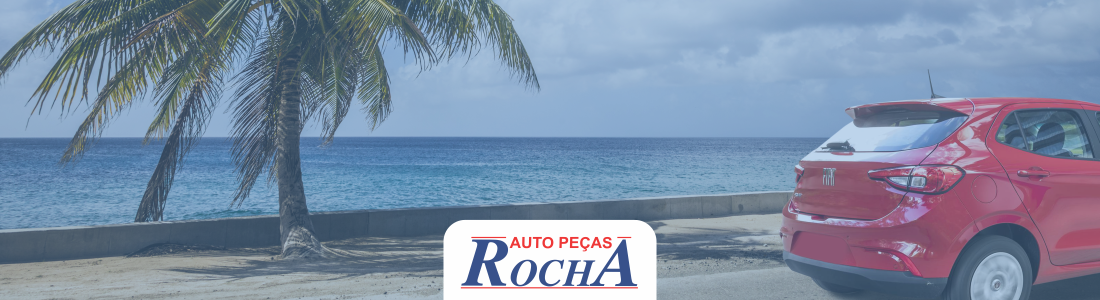 Cuidados que você deve ter com o seu veículo quando voltar da praia.